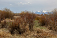 12Ar Arapaho National Wilidlife Refuge (4)
